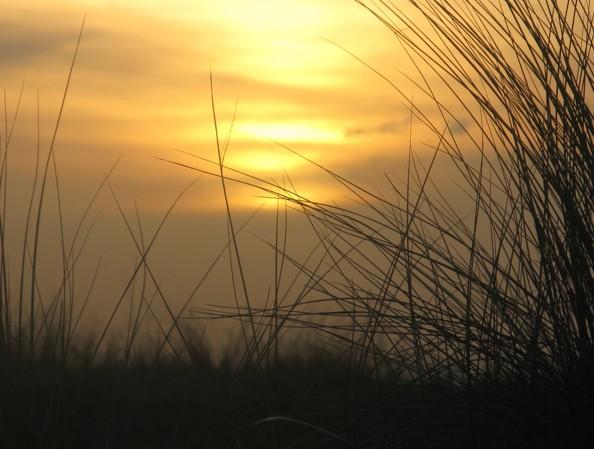 zonsondergang_in_de_duinen